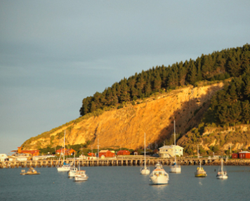 The Oamaru Harbour